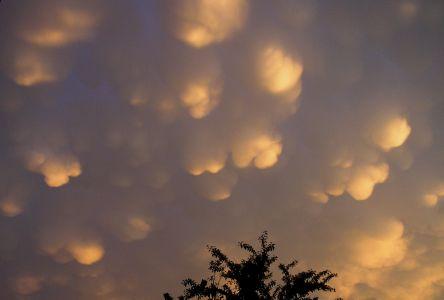 """<a href=""""http://saplimoges.fr/limage-du-mois-de-mars-2012-nuages-mammas/""""><b>Nuages Mammas (© 2006 Josette Gauchoux, saplimoges)</b></a>"""