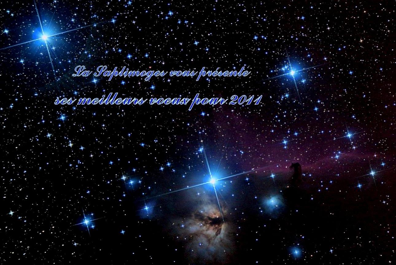 4_meilleurs_voeux_2011