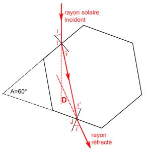 Hexagonefini