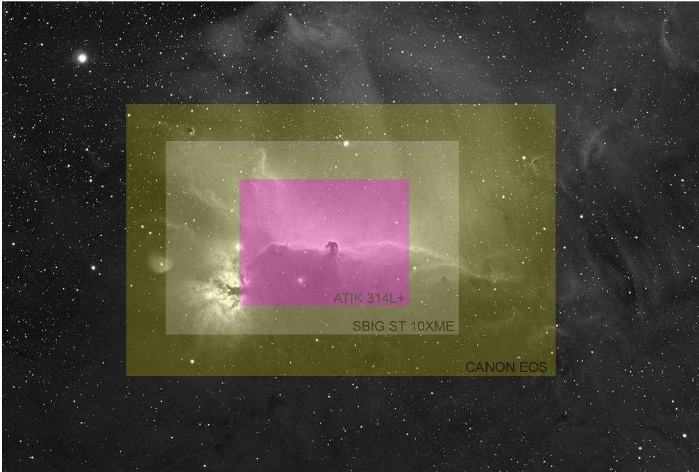 Tête de Cheval 4 formats